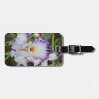 Luggage tag - White iris with purple edges