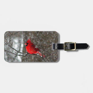 luggage tag with photo of male cardinal