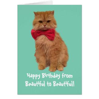 Luigi The Lion Cat Birthday Card