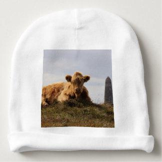 Luing cow on the Isle of Islay, Scotland Baby Beanie