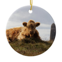 Luing cow on the Isle of Islay, Scotland Ceramic Ornament