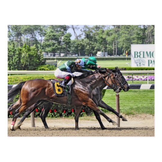 Luis Saez on Milesmore at Belmont Park Postcard