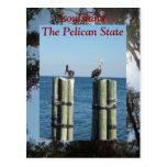 Luisiana el estado del pelícano postal