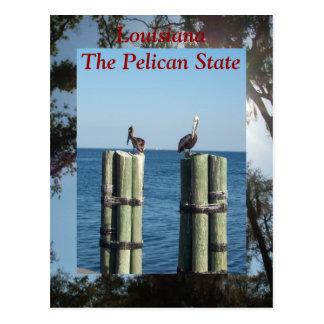 Luisiana el estado del pelícano postales