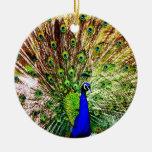 Lujo real animal S del pájaro verde hermoso del pa Ornamento Para Arbol De Navidad
