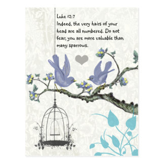 Luke 12:7 you are more valuable than many sparrows postcards