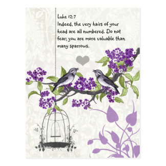 Luke 12:7 you are more valuable than many sparrows postcard