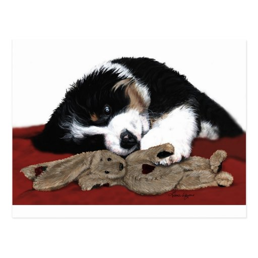Lullaby Berner & Bunny Post Card