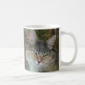 Lulu - dozing at Noon Coffee Mug