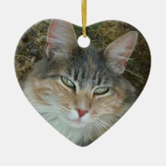 Lulu the Cat Ceramic Ornament