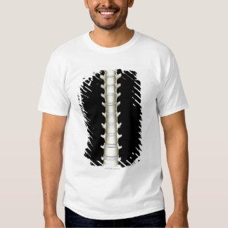 Lumbar and Thoracic Vertebrae Shirt