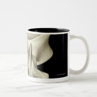 Lumbar Vertebra 4 Two-Tone Coffee Mug