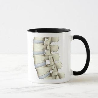Lumbar Vertebrae Mug