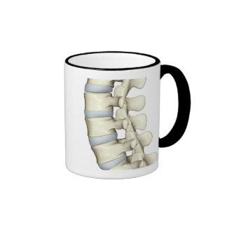 Lumbar Vertebrae Ringer Coffee Mug