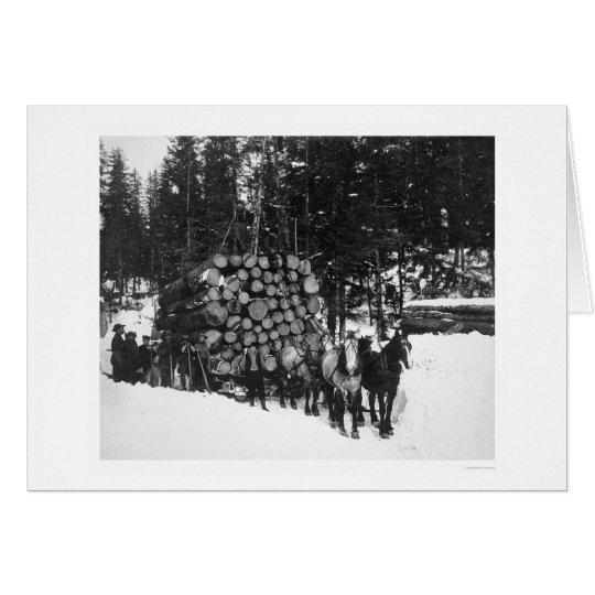 Lumber Hauling Seward, Alaska 1919 Card