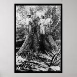 Lumberjacks in Mindoro Region, Philippines 1906 Posters