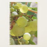 "Luminescent green grapes planner<br><div class=""desc"">Taken in my vegetable garden on a bright sunny day.</div>"