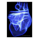 Luminescent view of the human heart greeting cards