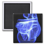 Luminescent view of the human heart refrigerator magnet