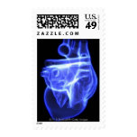 Luminescent view of the human heart postage stamp