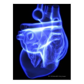 Luminescent view of the human heart postcard