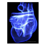 Luminescent view of the human heart postcards