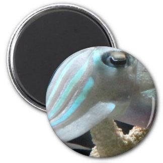 Luminous Cuttlefish 2 Inch Round Magnet