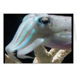Luminous Cuttlefish Greeting Card