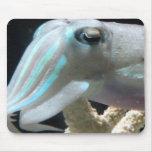 Luminous Cuttlefish Mouse Pad