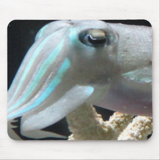 Luminous Cuttlefish Mouse Pad