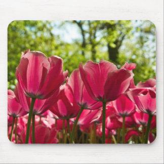 Luminous Pink Tulips Mousepad