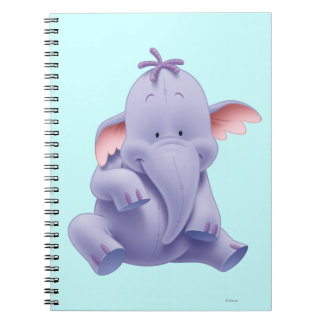 Lumpy 1 notebook