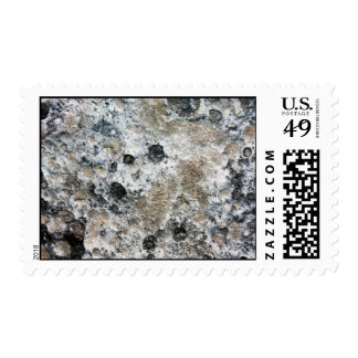 Lumpy Bumpy Moon Rock Postage Stamp