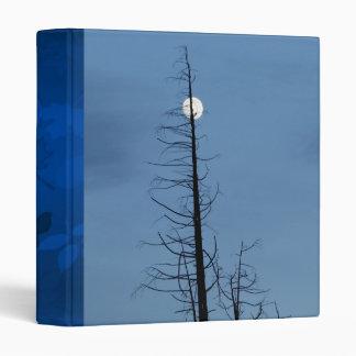 Luna alanceada por el árbol