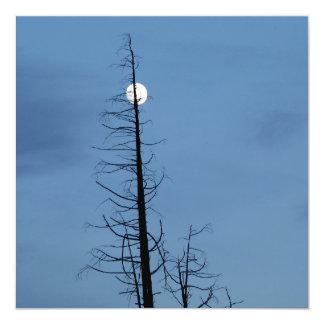 """Luna alanceada por el árbol invitación 5.25"""" x 5.25"""""""