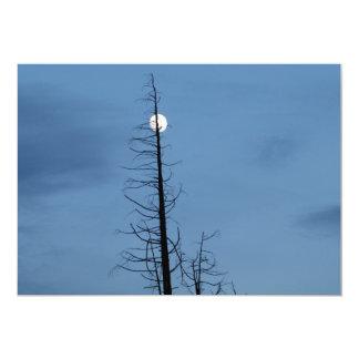 """Luna alanceada por el árbol invitación 5"""" x 7"""""""