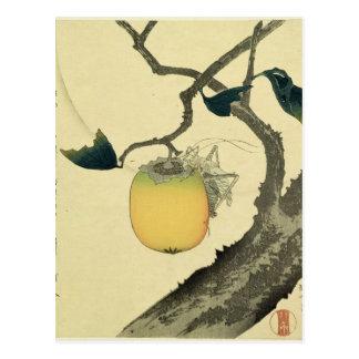 Luna, caqui y saltamontes, 1807 tarjetas postales