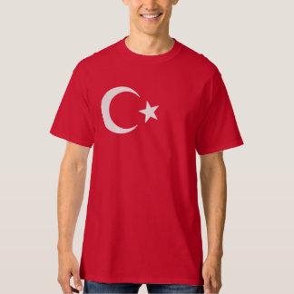 Luna creciente y estrella de la bandera turca playera