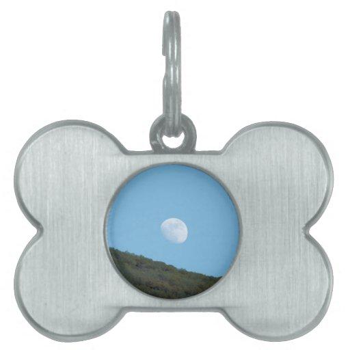 Luna de Arizona Placas De Mascota