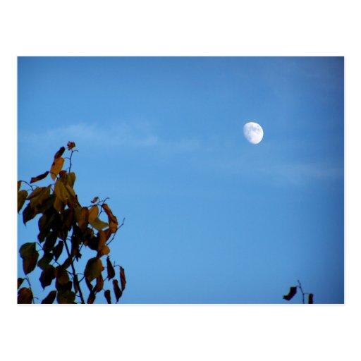Luna de cosecha en octubre postal