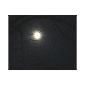 Luna de Midnite Impresion En Lona