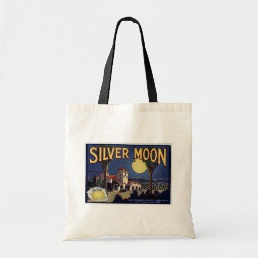 Luna de plata bolsa de mano