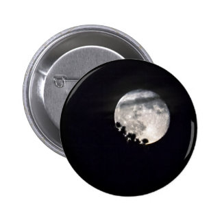 Luna de Sesqui Pins
