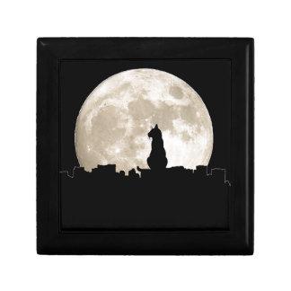 Luna del gato callejero caja de joyas