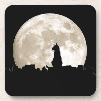 Luna del gato callejero posavaso