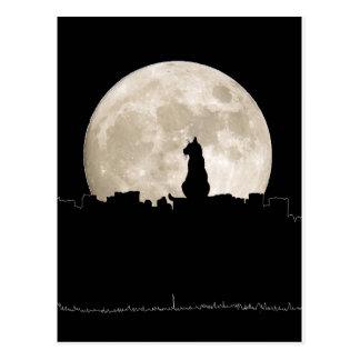 Luna del gato callejero tarjeta postal