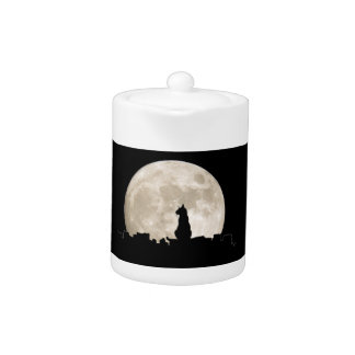 Luna del gato callejero