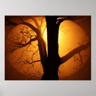 Luna del otoño que brilla a través de la impresión posters
