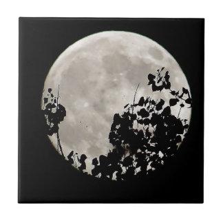 Luna detrás de las hojas oscuras azulejo cuadrado pequeño