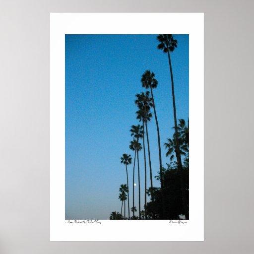 Luna detrás de las palmeras poster